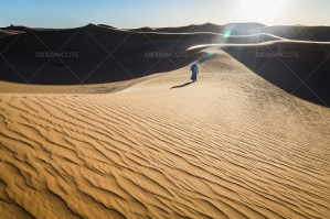 Sand Dunes In The Sahara Desert At Dusk No. 6