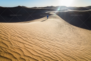 Sand Dunes In The Sahara Desert At Dusk No. 7