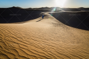 Sand Dunes In The Sahara Desert At Dusk No. 8