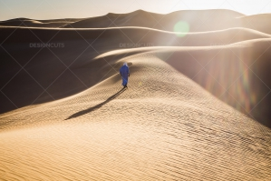 Sand Dunes In The Sahara Desert At Dusk No. 9