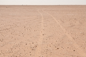 Vehicle Tracks Leading Through The Sahara Desert No. 6