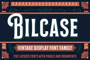 Bilcase Vintage Display Font Family