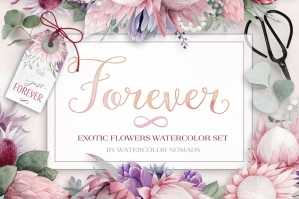 Exotic Tropical Watercolor Flowers Collection