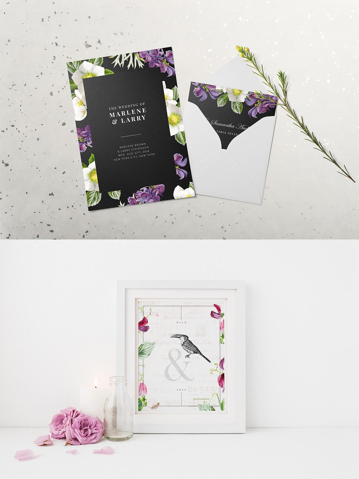 The Botanist - Flower Illustrations