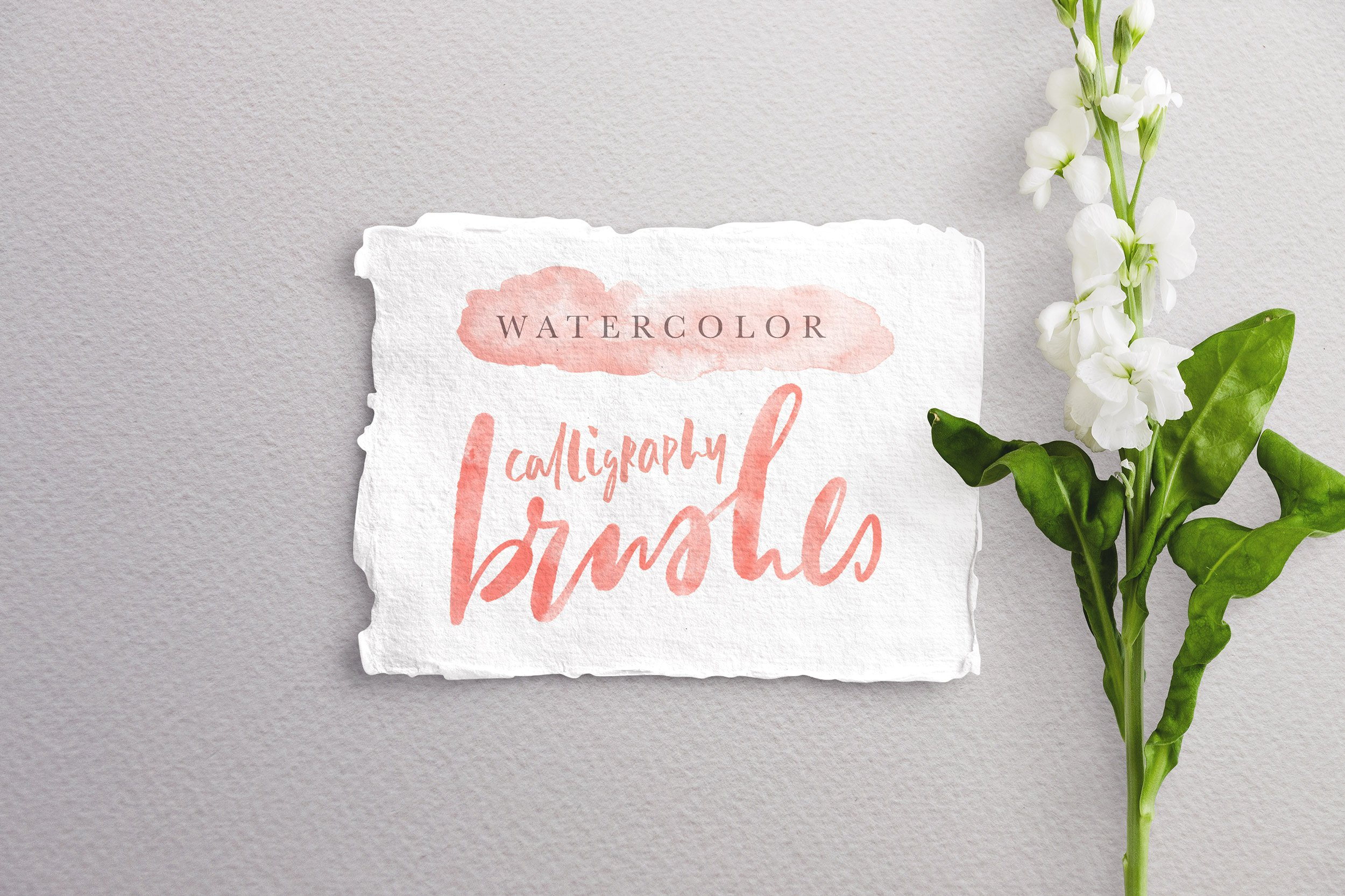 10 Procreate Watercolor Calligraphy Brushes