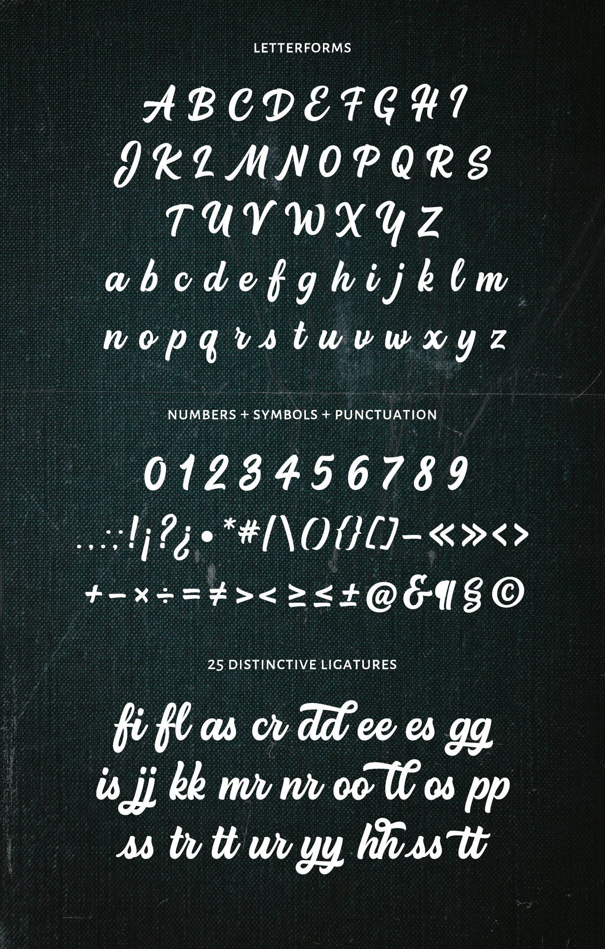 honestdesignersscript_letterforms1