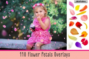 110 Flower Petals Photo Overlays