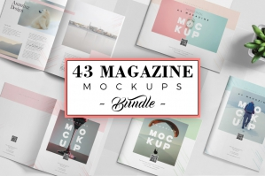 43 Magazine Mockups Collection