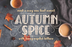 Autumn Spice Display Sans Serif Font