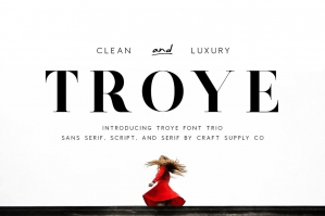 Troye Font Trio - Clean and Luxury