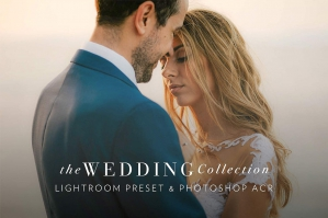 90 Wedding Lightroom Presets