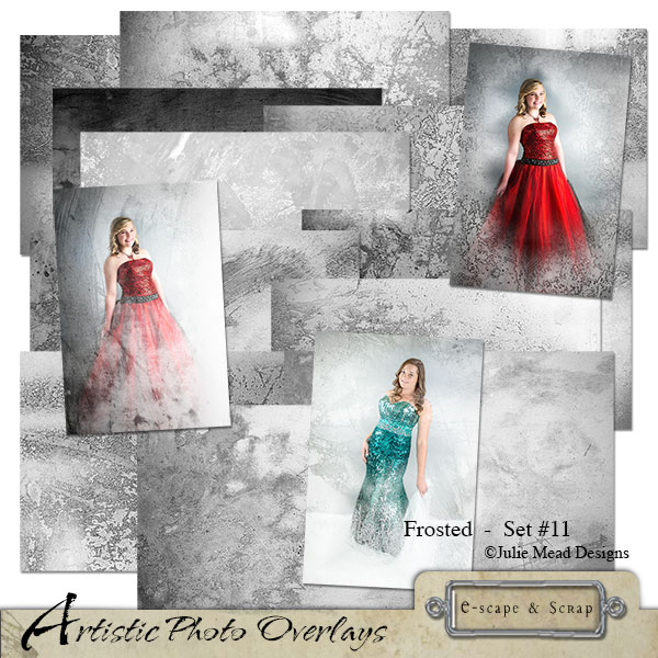 Artistic Photo Overlays 11 - Frosted