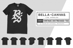 Bella Canvas 3009 Distressed T-Shirt