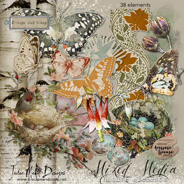 Mixed Media Nature Collection