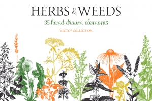 Big Herbal Bundle - 35 Elements