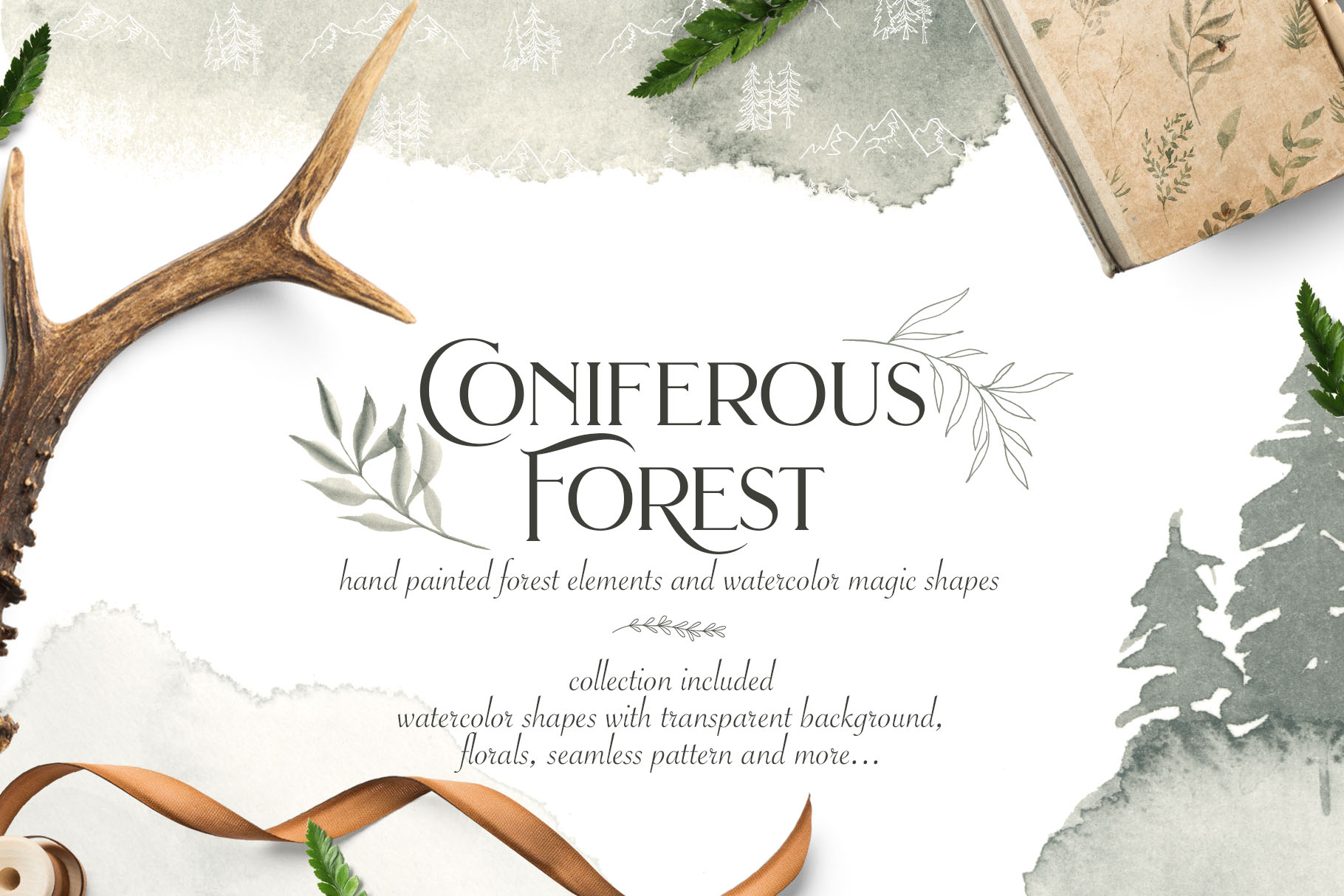 Coniferous Forest Collection