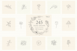 Botanical Hand Drawn Flowers Logo Frames Line Art