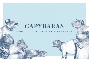 Capybara - Illustration and Pattern Bundle