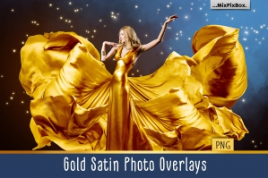 Gold Satin Photo Overlays