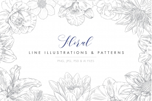 Line Floral Illustrations and Patterns
