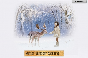 Winter Reindeer Backdrop
