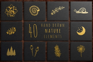 40 Hand Drawn Elements Nature