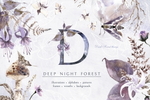Deep Night Forest