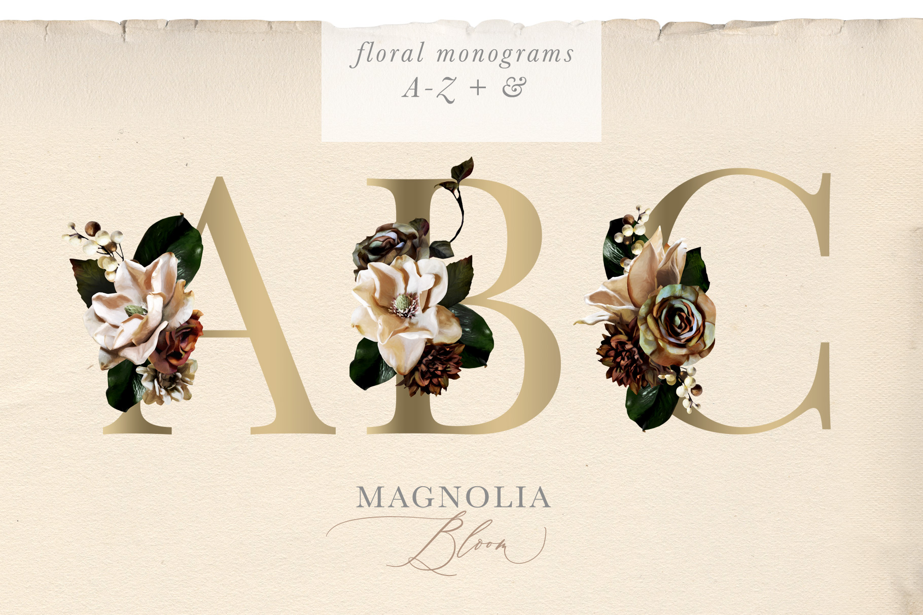 Magnolia Bloom Flower & Monogram Graphics