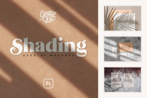 Shadow Overlays & Stationary Mockups