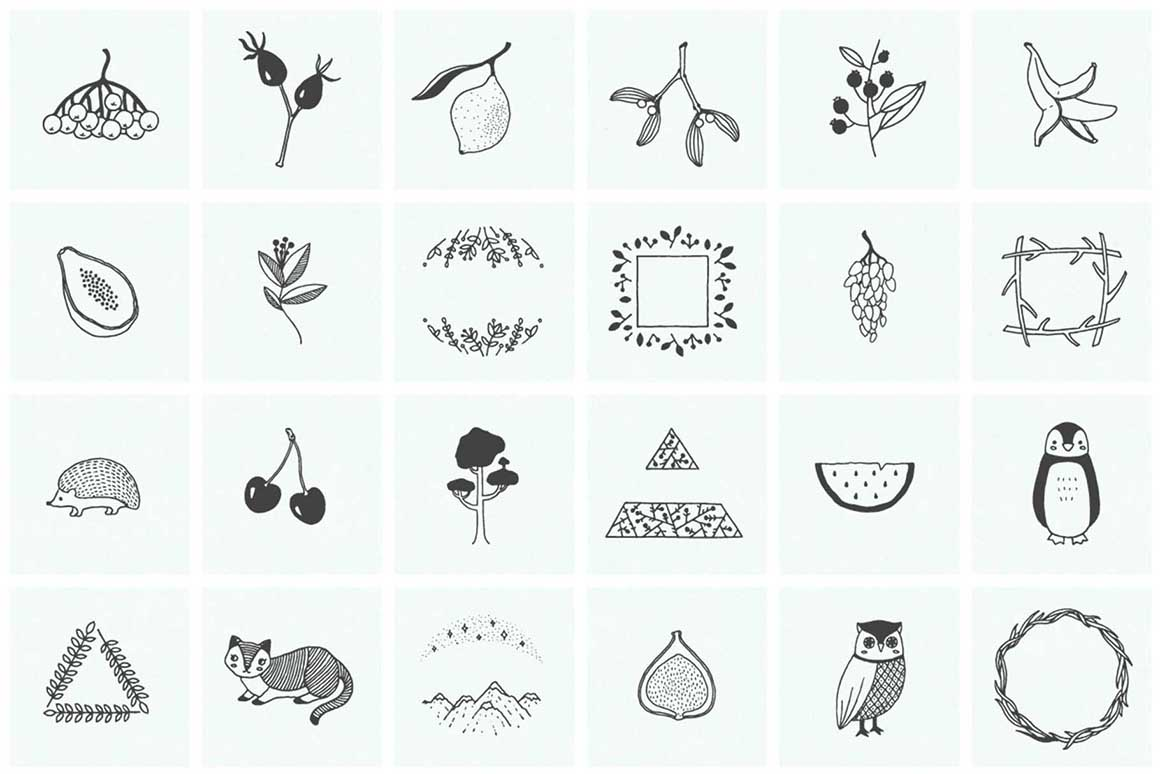 150 Hand Drawn Elements Nature