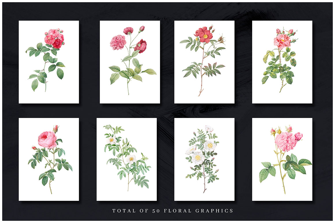 50 Luxury Flower Clipart + Bonus