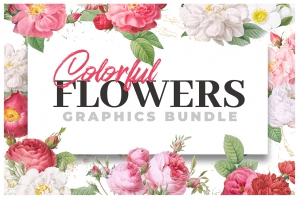 Colorful Flowers - Graphics Bundle