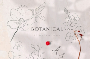 Line Drawing Botanicals, Plants, Florals
