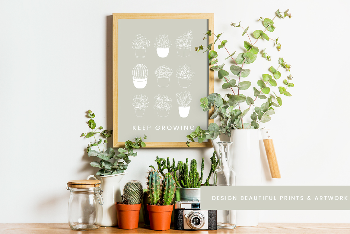 Succulent & Cacti Vector Illustrations
