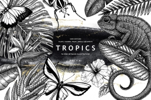Tropical Floral & Fauna Vector Bundle