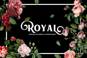 Vintage Flower Illustrations Bundle