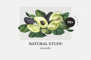 Avocado: Natural Study Set ll - Watercolor Pack