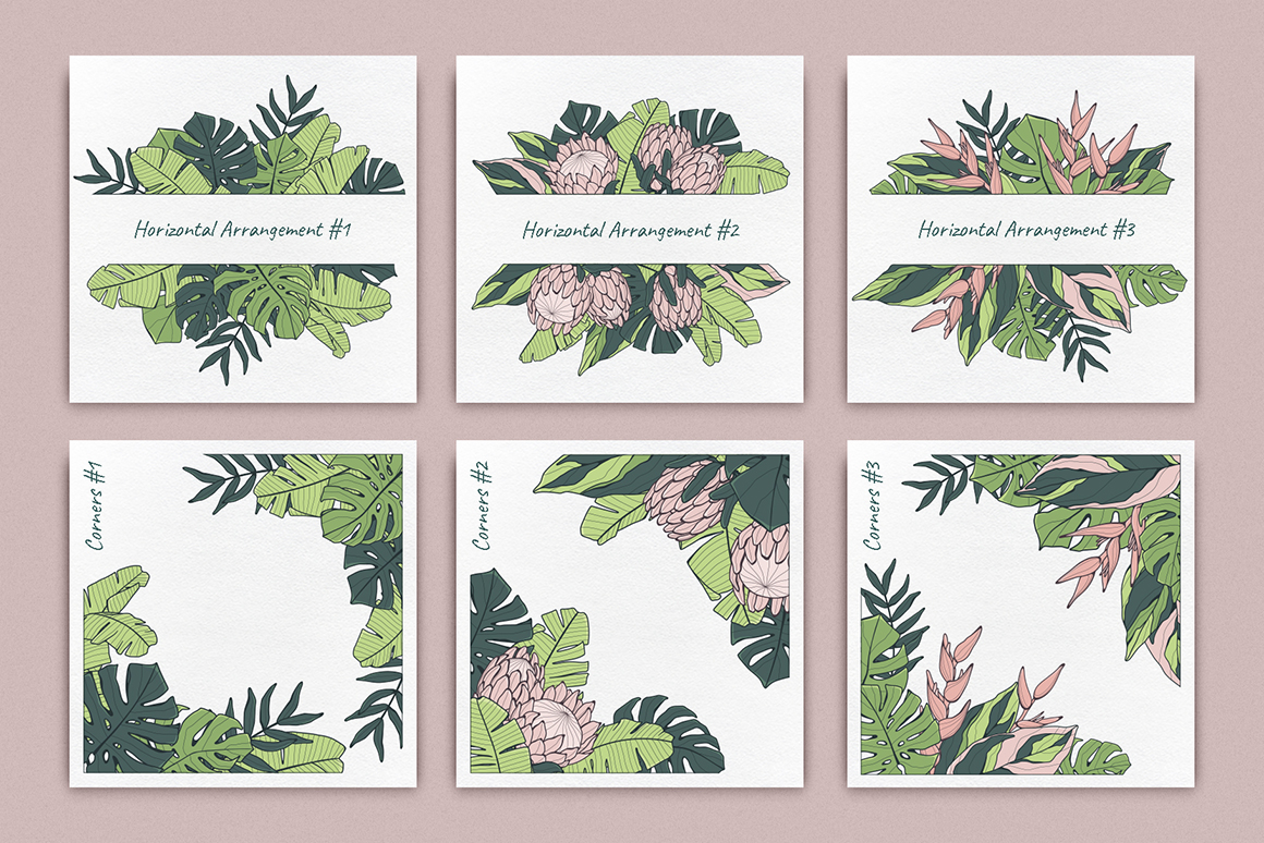 Jungle Story: Tropical Patterns & Elements