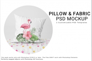 Throw Pillow and Fabric Set