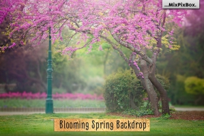 Blooming Spring Backdrop
