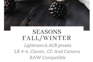 Seasons – Fall Winter Lightroom ACR Presets