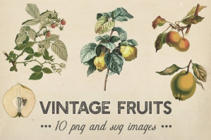 Shabby Fruits & Plants Clipart