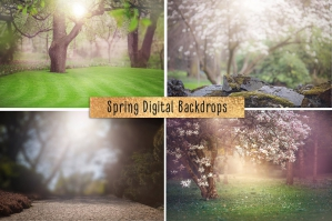 Spring Digital Backdrop