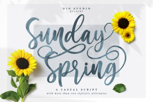 Sunday Spring - Chic Brush Font