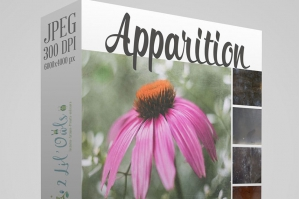Apparition Fine Art Textures