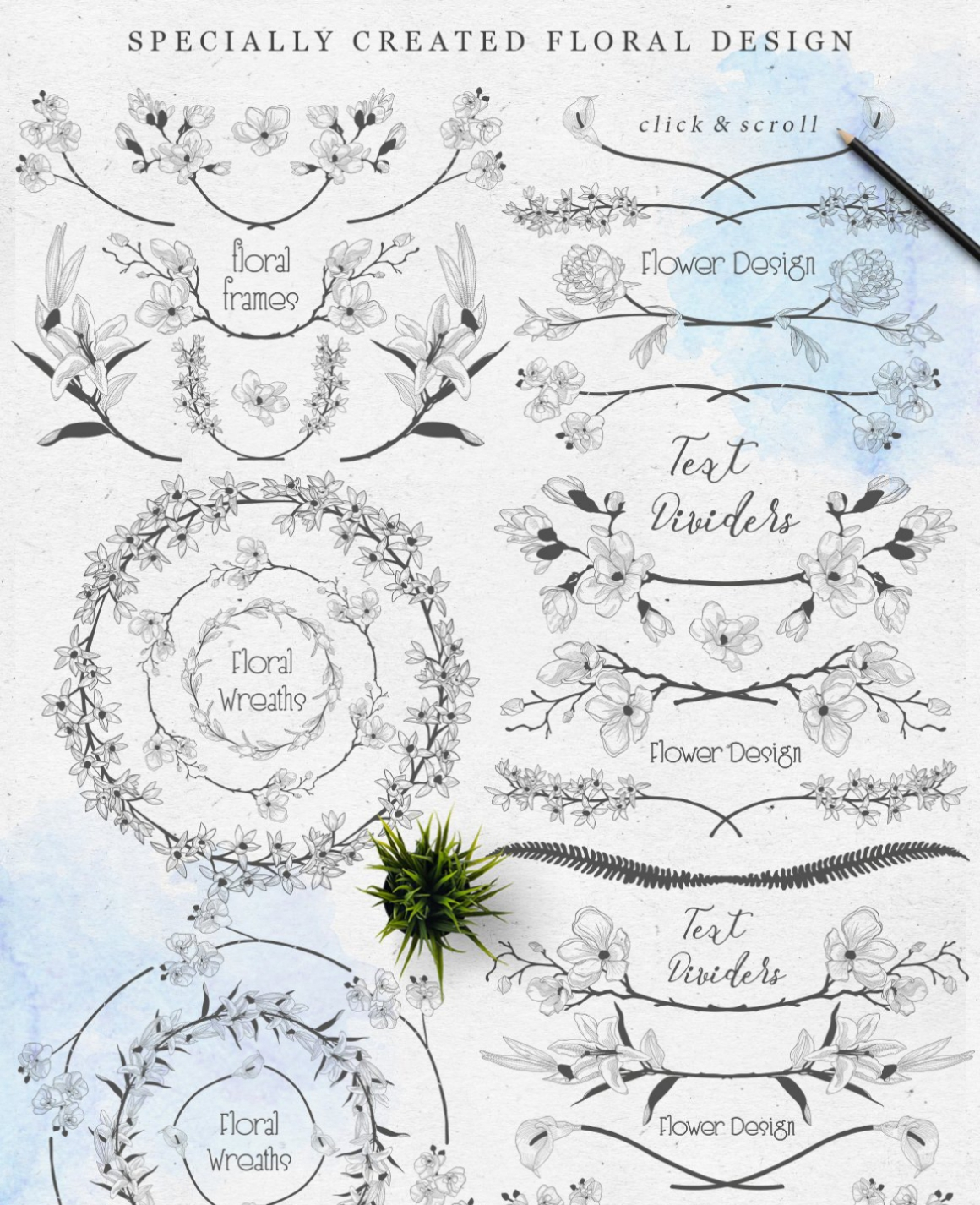 Delicate Blossom Collection of Design Elements