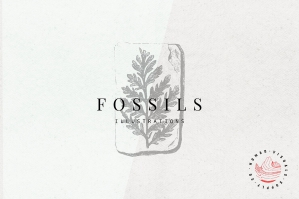 Fossils Illustrations