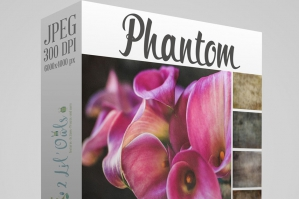 Phantom Fine Art Textures