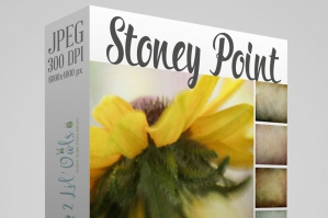 Stoney Point Fine Art Textures