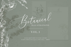 Botanical Illustrations Volume 1